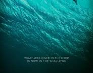 the_shallows_title