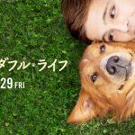 『僕のワンダフル・ライフ』映画のネタバレ・あらすじと感想!