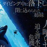 『海底47m』の動画を無料視聴する方法!あらすじ・見どころを紹介